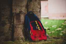 close up photography of backpack on tree